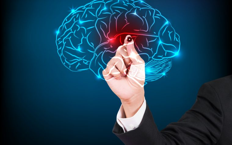 Virtual brain may help with epilepsy.